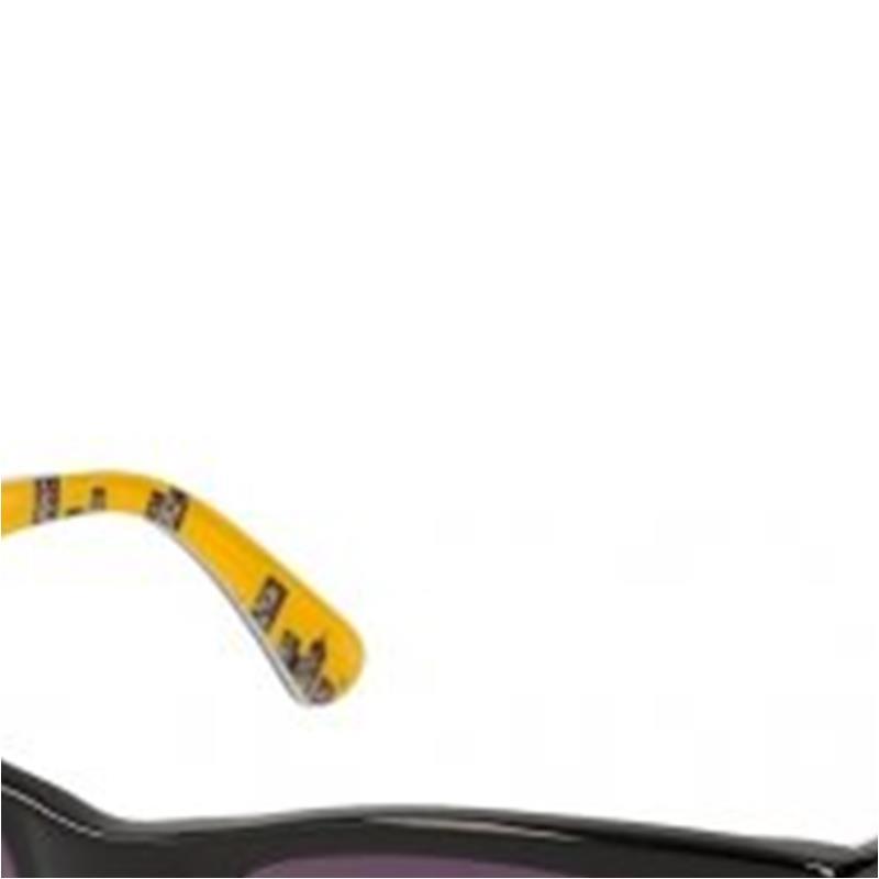 classic wayfarer sunglasses  skyline 2 wayfarer