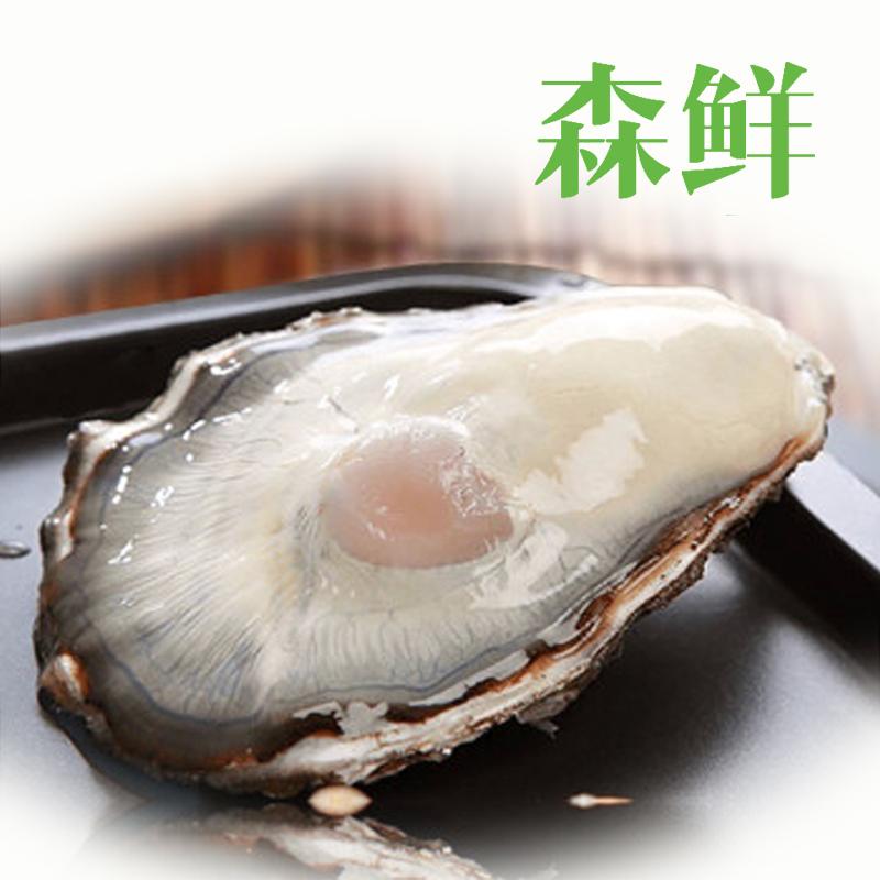 森鲜  精选去壳牡蛎肉500g 生蚝肉 海蛎子肉 天然美味