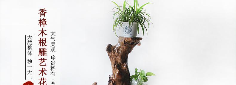 香樟木实木根雕花架原木树根花架底座盆景架子