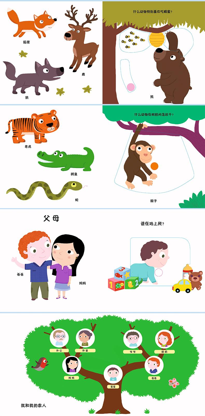 交通工具 宠物朋友 野生动物 我的家人0-1-2-3岁宝宝启蒙读物早教绘本