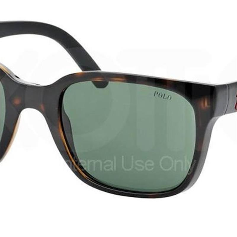 dark gray polo shirt  polo ph4089 sunglass-500371