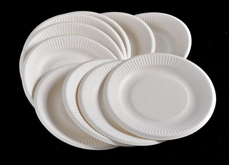 喜佳优 一次性纸盘子幼儿园手工diy绘画画盘子蛋糕餐盘纸碟子纸盘6-8
