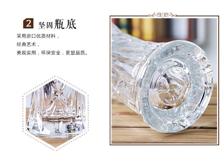 兰眉 新欧式大号玻璃透明花瓶水培植物富贵竹绿萝客厅图片