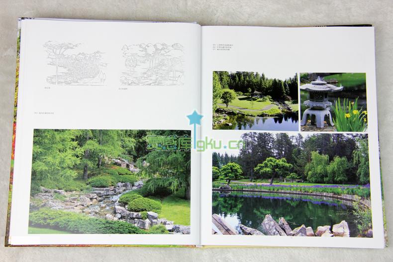 枯山水广场景观手绘平面图