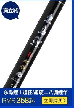 东岛碳素轻硬二八调鲤鱼竿 大师 台钓手杆钓鱼竿渔具垂钓用品 3.6米
