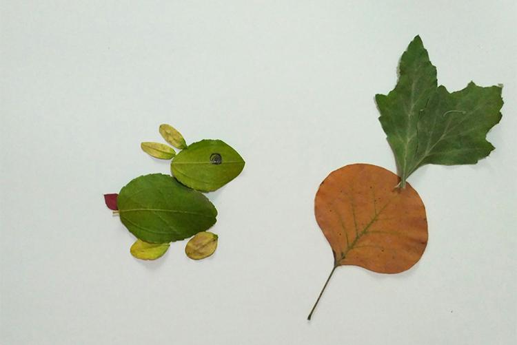 叶画树叶粘贴画植物标本金鱼蝴蝶真叶子作画幼儿园学生手工塑封膜图片