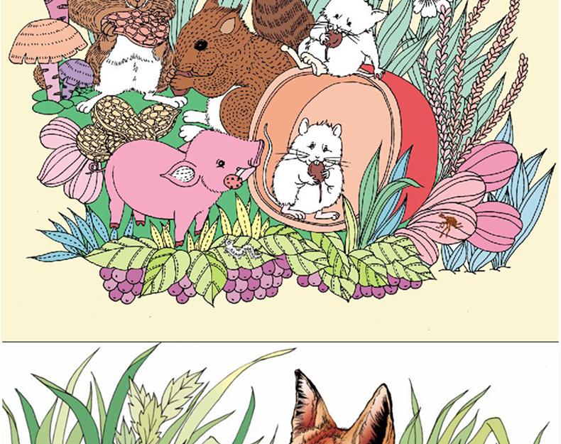 秘密森林 魔幻花园手绘 少儿童青少年创意涂鸦 秘密花园魔法森林素描
