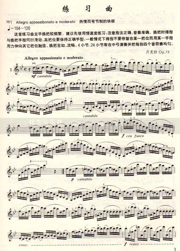 正版 丹克拉小提琴练习曲20首 中国青年出版社 音乐畅销书籍