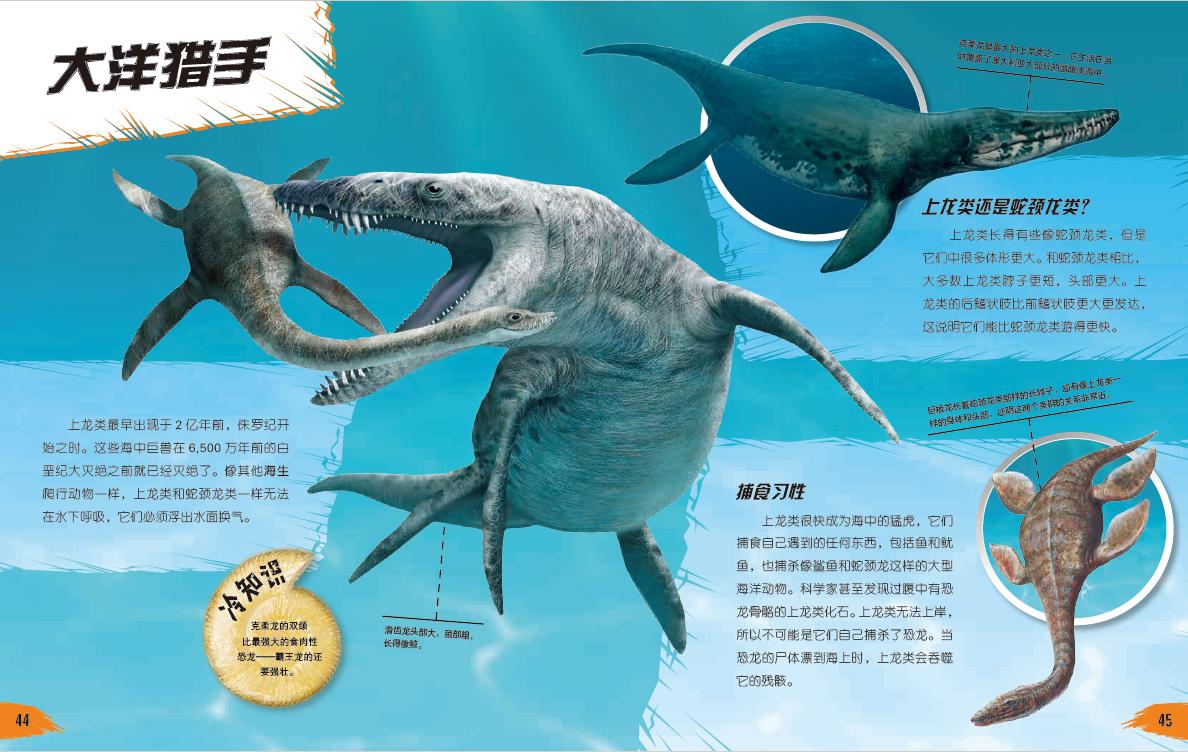 环球探索探秘百科 动物王国 恐龙时代 鲨鱼海域 关于恐龙的书籍图书 6