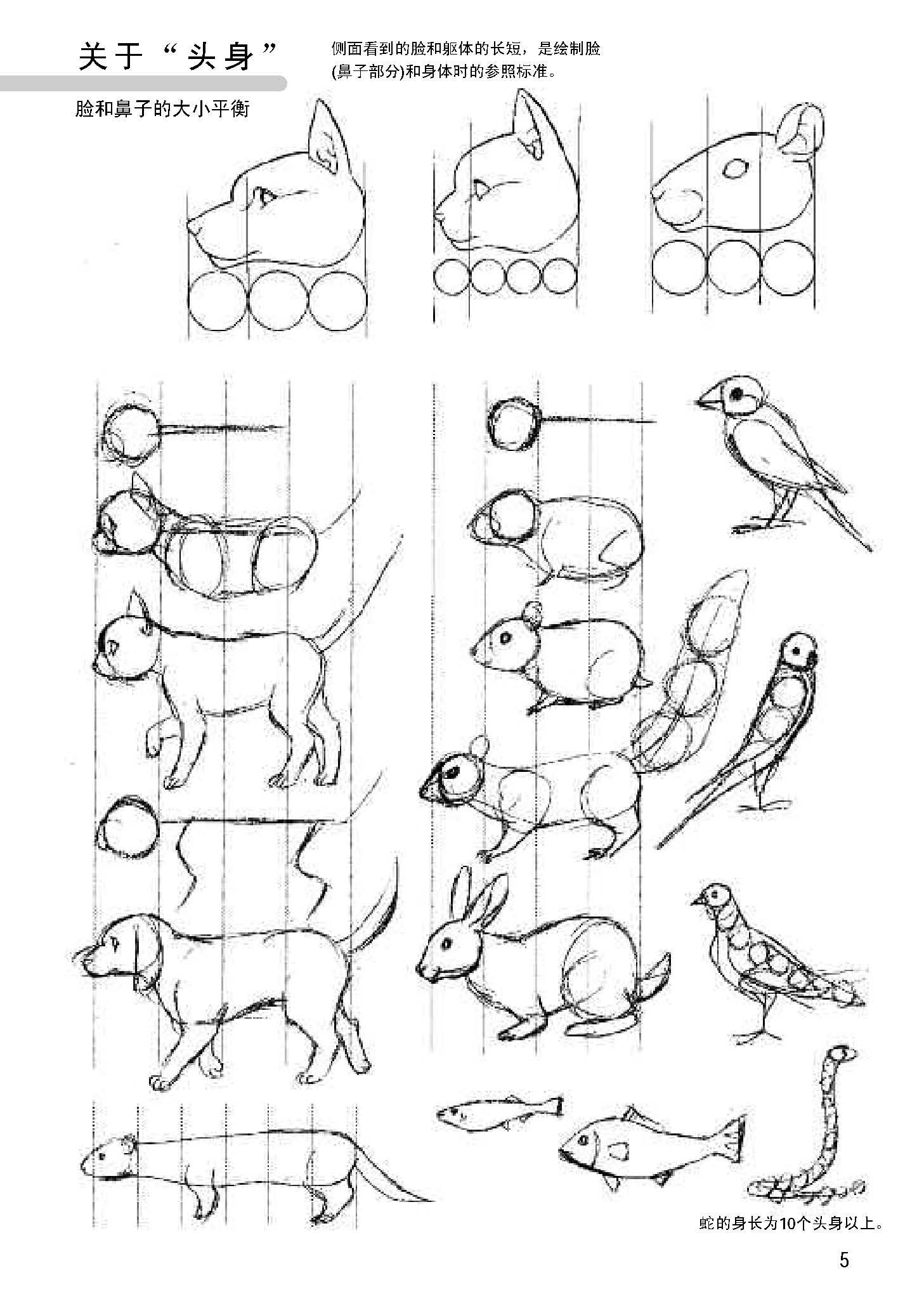 零基础学画漫画素描技法动漫手绘书技法美术书入门铅笔素描动物手绘