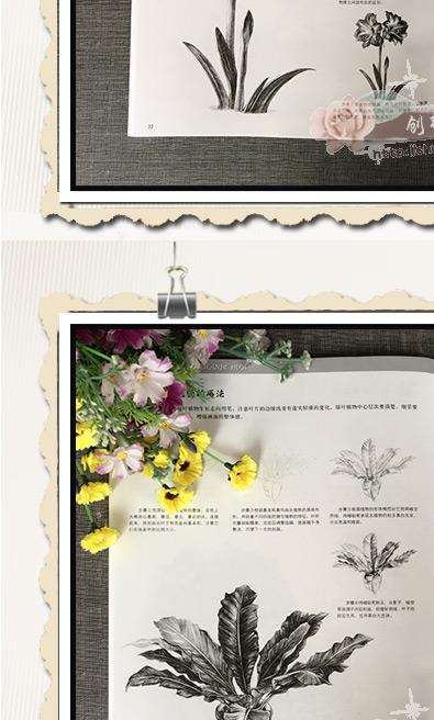 【量大从优】素描铅笔画花卉植物篇画桃花月季百合等画法 手绘新生从