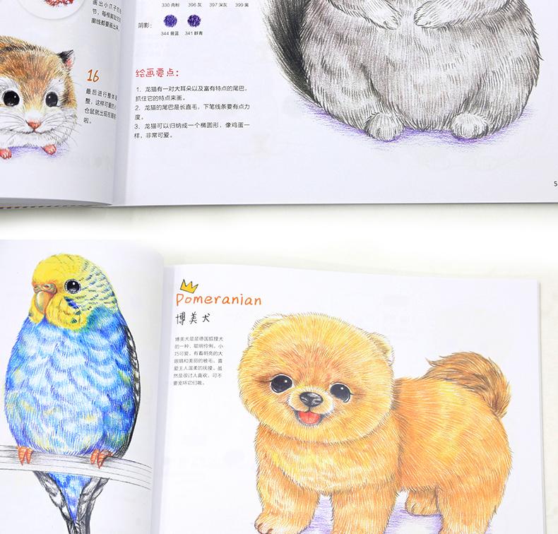 呆萌小动物画起来 彩铅书 色铅笔 铅笔画 动物猫咪绘画书 减压涂色书