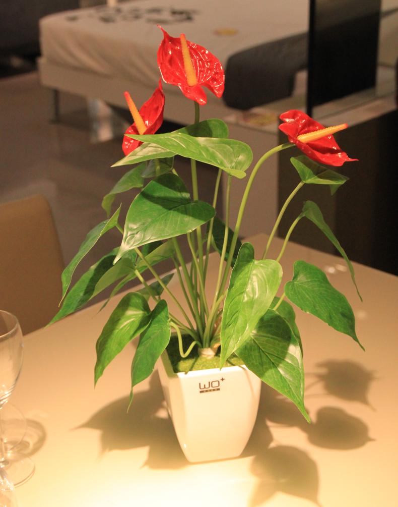 00 欢畅 景德镇陶瓷花瓶摆件 瓷器装饰盘 12色可选三件套装饰品aj160