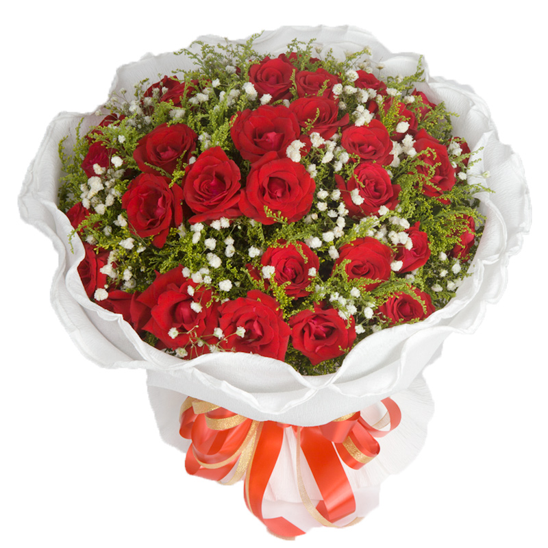 33朵红玫瑰,配黄英,黄英,多层白色卷边纸圆形包装,配精美花结.