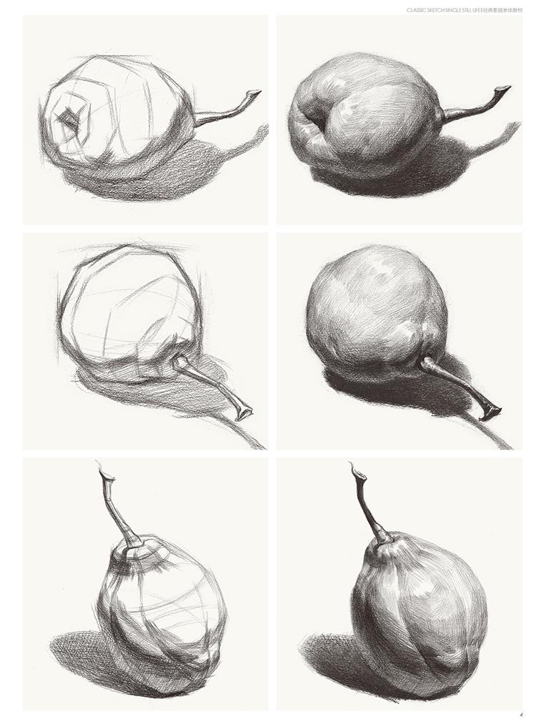 经典全集 素描单个体静物书临摹范本大画结构解剖与透视训练入门绘画