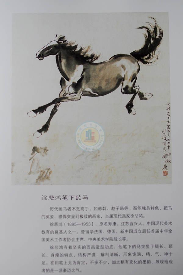 中国画马画法-国画怎么画马