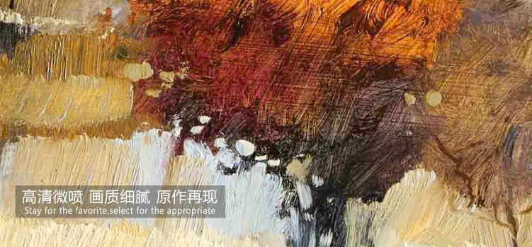 天画简约有框装饰画简框壁画墙画挂画欧式电视背景墙油画田园风格 e10图片