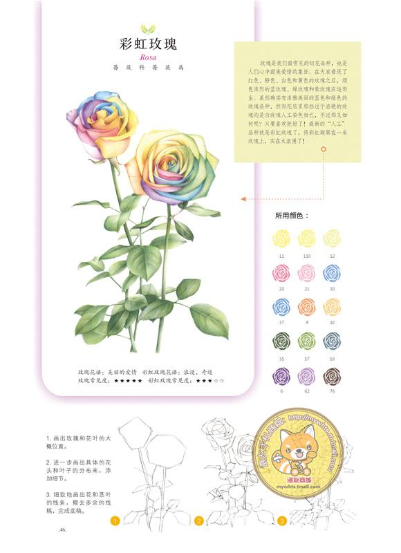 漫友商城 你绘幸福的 彩铅手绘鲜花教程 猫小蓟 永生花绘画技巧
