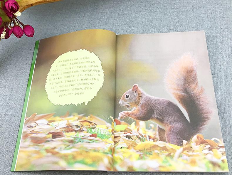世界动物小说精品书系 西顿野生动物故事小说集 三四五年级小学生课外