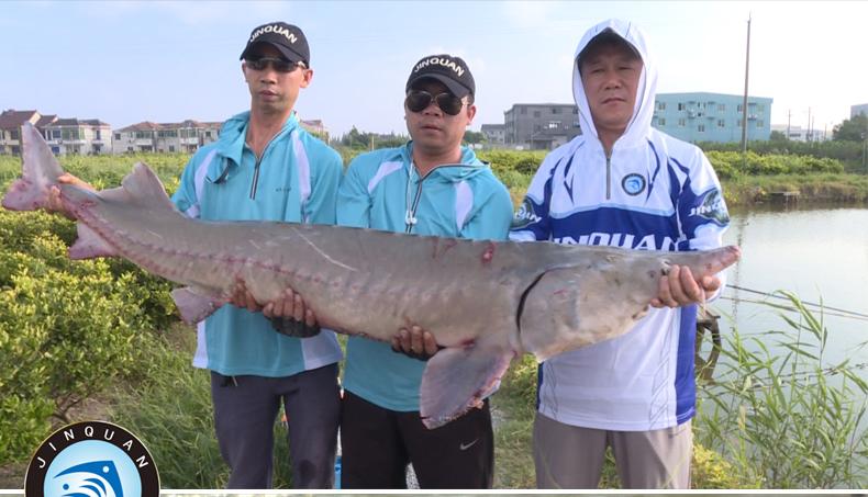 四海钓鱼频道直播