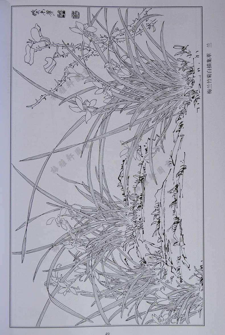 绘画类梅花兰花竹子