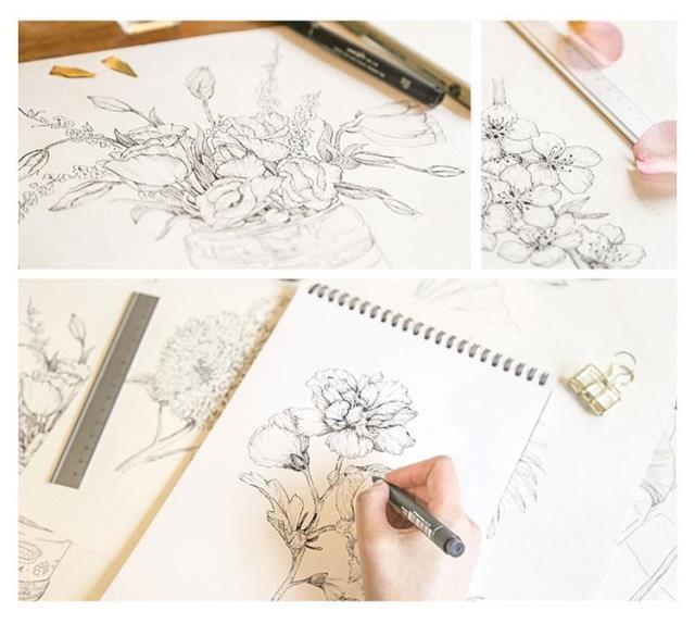 钢笔画手绘入门教程素描基础入门教程植物绘 黑白彩铅花卉植物手》