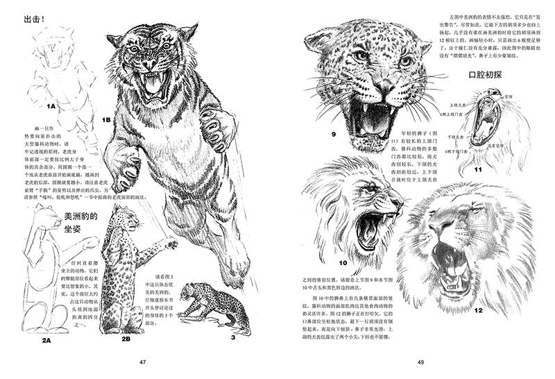 世界绘画经典教程:ag游戏直营网|平台素描 图片合集