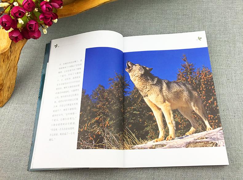 世界动物小说精品书系/西顿野生动物故事小说集/三四五年级小学生课外