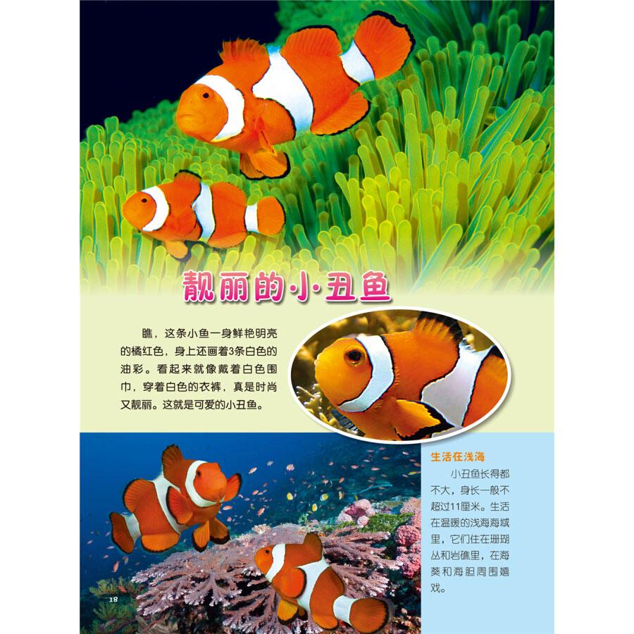 中国儿童动物百科图典 天空海洋动物 3-6-9岁幼儿童科普百科全书启蒙