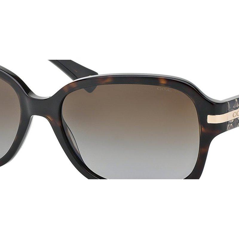 dark polarized sunglasses  c dark brown