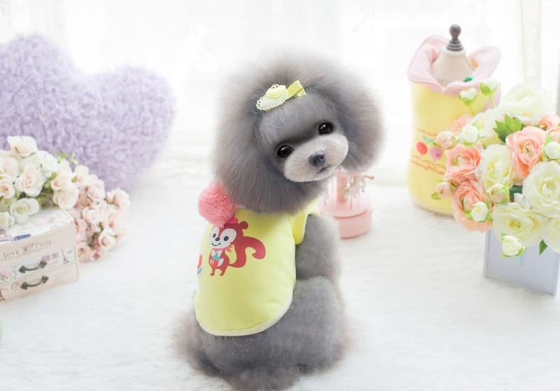 宠物衣服petco小松鼠带帽绒衫 博美泰迪狗衣服 黄色 xl
