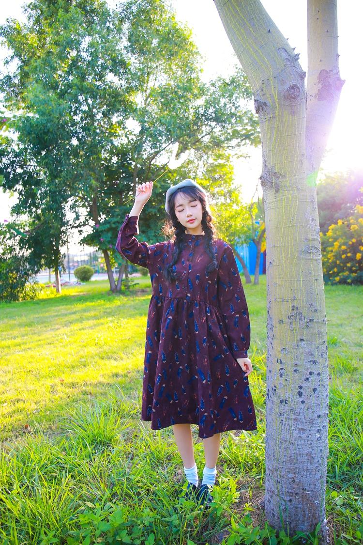 外莱依 2016春装新款复古小清新文艺范印花长袖连衣裙女 深咖啡 均码