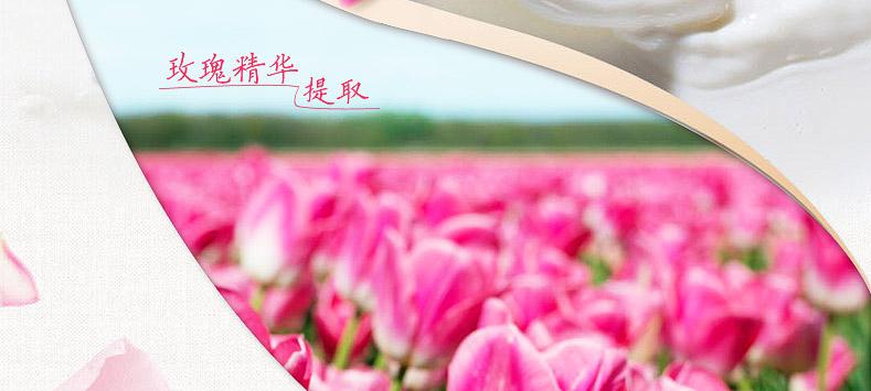 玫瑰花茉莉花的图片背景