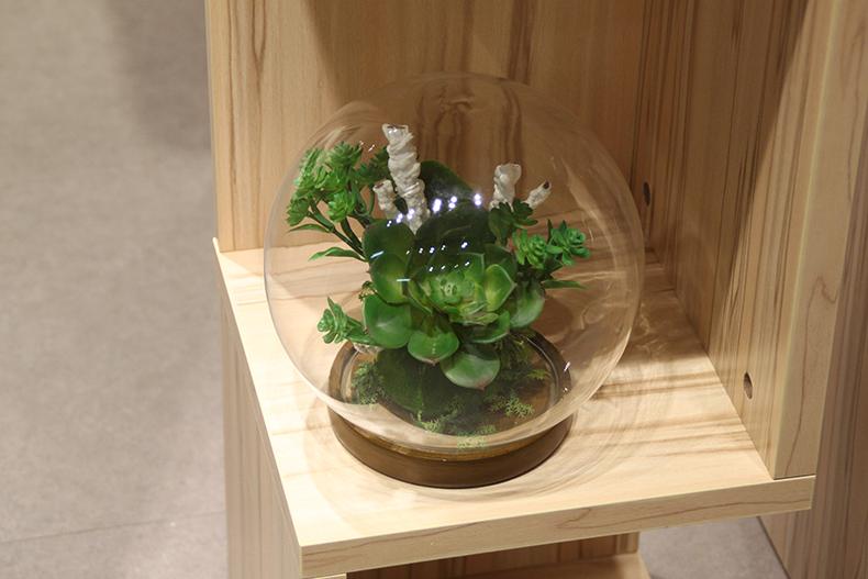 绿色植物玻璃花瓶套装 创意家居装饰摆件 时尚花艺 18圆球玻璃罩花器