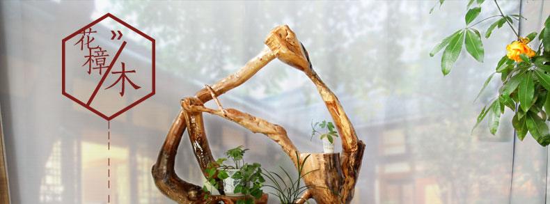 典艺阁根雕花架盆景架花樟木创意根雕底座天然实木