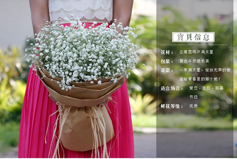 绿韵花田满天星花束鲜花速递 全国鲜花店送花 市区免费配送 生日礼物