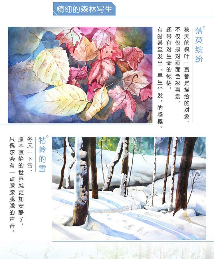 浪漫水彩课 唯美森林手绘技法 水彩绘画技法大全 原森态水彩插画自学