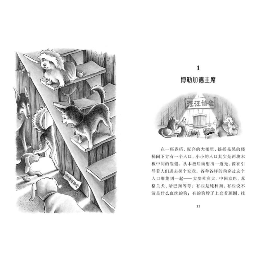 全套3册狗狗日记 猫猫日记 小马的故事 小马 小狗 小猫 麦克米伦世纪