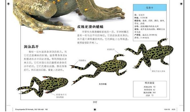 dk儿童动物百科全书(精) 7-10-14岁儿童读物 dk儿童动物世界大百科