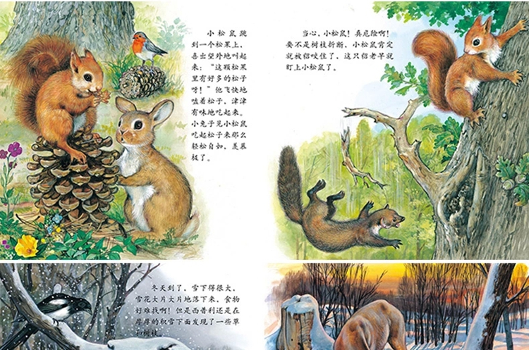 《跟随小动物的足迹全12册幼儿童绘本故事书图画书小