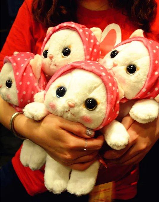 腾彩日本超高人气choo choo cat超萌可爱小猫咪公仔玩偶儿童安抚娃娃