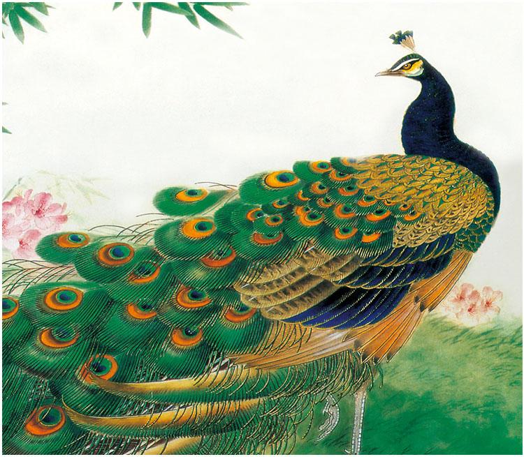 腾彩苏绣刺绣diy套件初学手工装饰画带针脚孔雀牡丹 多尺寸j1