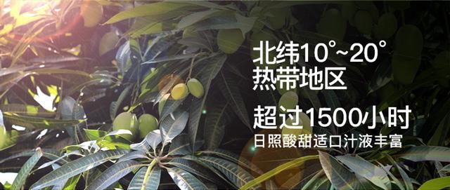 百草味 水果干 菲律宾风味蜜饯小吃果脯 芒果干120g/袋(新老包装随机发货)