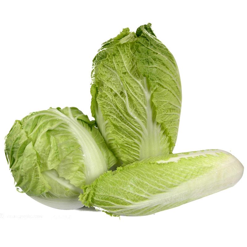 【任我在线】北京同城配送 精品大白菜 精品蔬菜 新鲜 直达 1250g