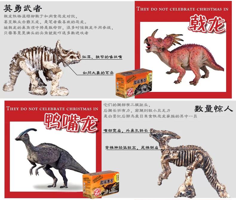恐龙化��-a9��_儿童益智玩具 diy玩具 挖掘恐龙骨架化石 皮诺考古拼装玩具模型 小型