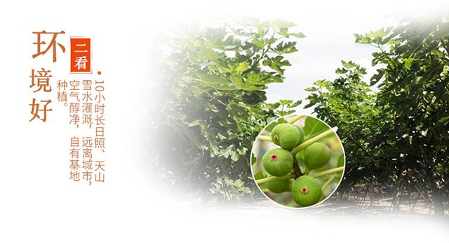 西域美农 无花果干500g/袋 休闲零食 蜜饯果干 新疆特产 干果果脯 品质健康食品
