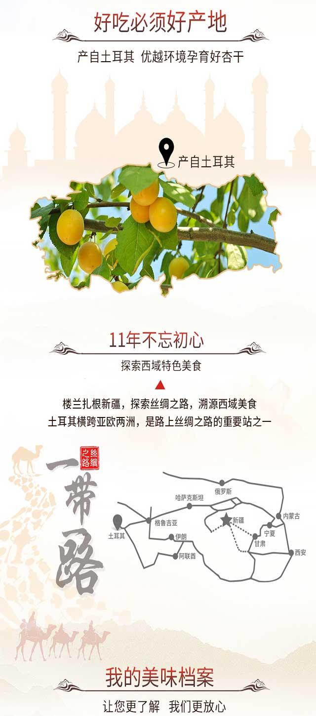 楼兰蜜语 蜜饯果干 休闲零食 红杏干 土耳其大杏干120g/袋