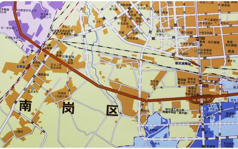 什么地图能看到城市的所有街道图片