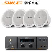 Jinzheng NINTAUS BX-206 Deckenlautsprecher Deckendecke Audio Konferenzraum Hintergrundmusik Leistungsverstärker Lautsprecherset AV2011B Leistungsverstärker + 4 BX206 Deckenlautsprecher