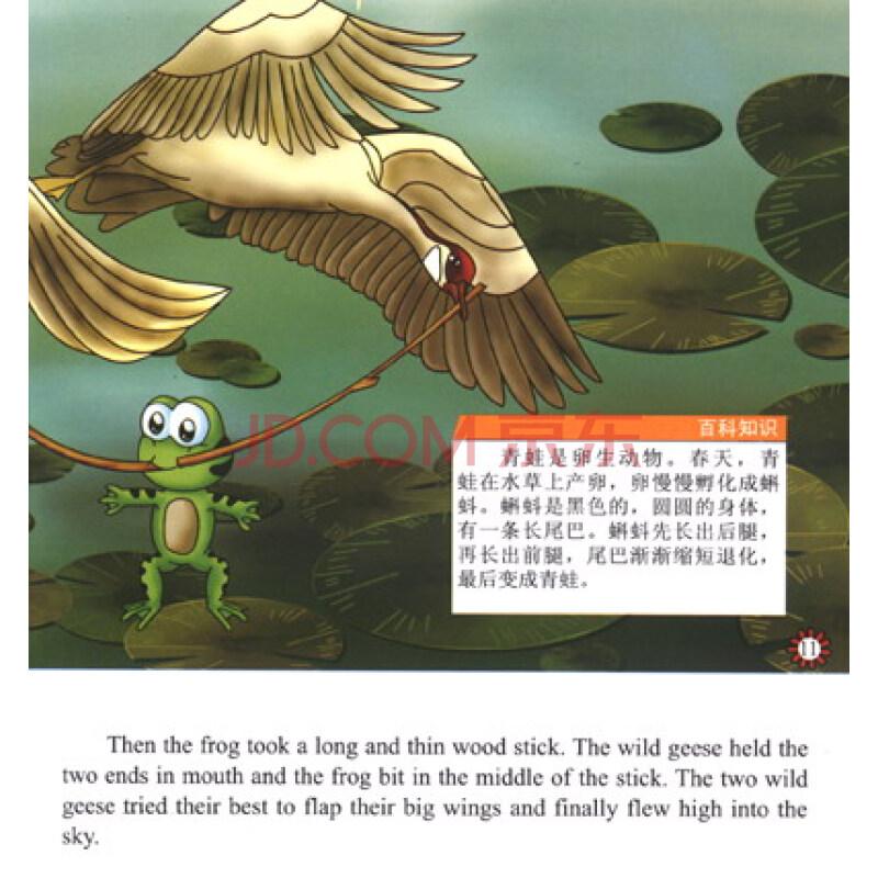 大雁的故事阅读答案